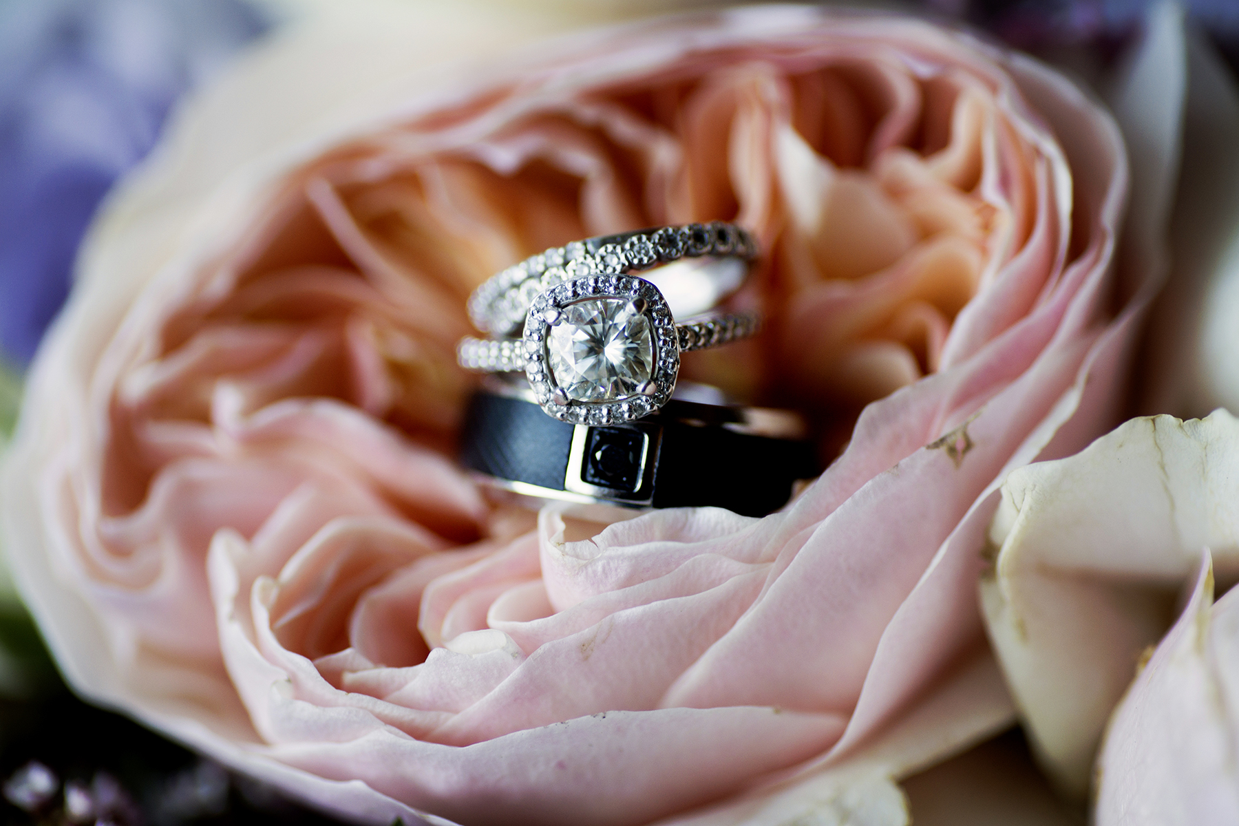 wedding rings Wedding Day Photos