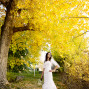 Utah Bridal Pictures fall colors yellow tree