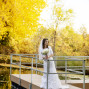 Utah Bridal Pictures yellow leaves fall