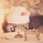 Utah Wedding Photos cake soft focus