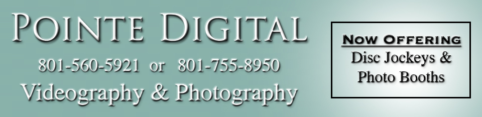 Pointe Digital logo