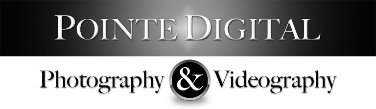 Utah Wedding Photography and Videography